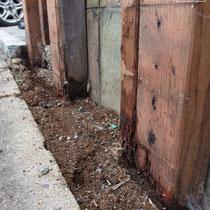 根元部分が最も被害が大きかった場所。木材の腐食とシロアリの被害、両方のダメージで柱が折れてしまいました。