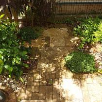 石畳とレンガの木漏れ日風景。下草もかわいく育っていますね。