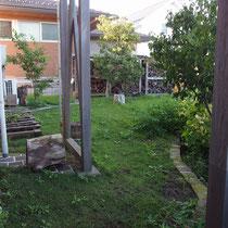 張芝後17カ月過ぎた10月。放置した雑草に占領されつつあるコウライ芝とTM9、なにか対策を考えなければ。