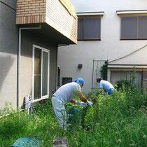 まずは造園職人さんによる雑草処理から。その後竹垣と石組みをします。