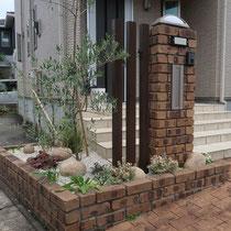 中庭から移植したオリーブを植えこみ、下草類を入れ替えたドライガーデン。砂利の下には雑草防止シートを敷設し雑草が生えにくい仕様です。