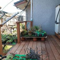 仕上がり写真、早速鉢植えを置いて楽しんで頂いてます。