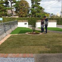 中庭より完成後、人工芝でお手入れが不要な部分が広いですが、成長するお庭としての天然芝スペース+花壇のシマトネリコも採用します。