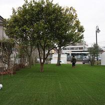 人工芝で広々したガーデンが完成!一番大きな樹木にはターコイズのブランコを配置し、夜はライトアップします。