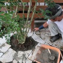 ウッドフェンスや植栽を植えこんで、仕上げの石貼り作業。ランダムな風合いがナチュラル感を演出します。
