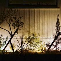 ライトアップした様子、間接照明で背景を照らし植物の枝葉を楽しむリーフガーデンです。