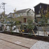 道路側には花壇を配置しつつ、程よい目隠し兼ねる植栽を植えこみます。