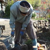 石積みはひとつひとつの形を見ながら、組み合わせていく地道で大変な仕事です。