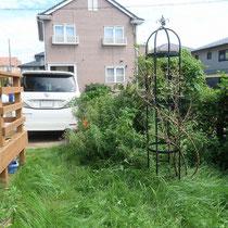 庭側から、ハマスゲをはじめとした雑草に追いやられた状態でした。