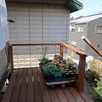 外に向かって広がる部分、鉢植え置場として使っていただいてますが、気持ちの良いデッキです。