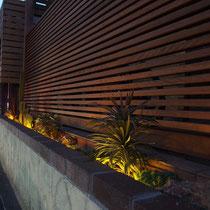 夜になるとぼんやりと灯るライトが、サボテンや多肉植物を静かにライトアップします。