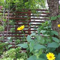フェンスはお庭の背景、中に植えられる植物たちが一層引き立ちます。