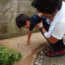 固まる土舗装には遊び心を感じるトンボのレリーフが。子供達にもたのしい隠れキャラ。