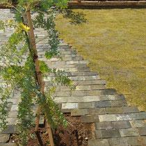 レンガ舗装と芝生の境目は、レンガ目地をランダムに割付して異素材が溶け込むように仕上げます。