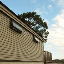 東側には採光と風通しを確保するスライド窓を配置。