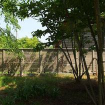 新緑が美しい初夏の風景。プライバシー保護を考慮した生活には目隠しウッドフェンスが必須です。