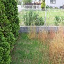 芝生のコーナー部分はブロックや花壇の縁で段差があるため、芝刈りの機械が入りにくくお手入れがしにくい場所です。
