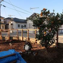 初日は柱と笠木を設置するところまで作業をしました。