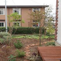 施工前、日差しが良く入るお庭ですが、風にさらされ外からの目線も気になります。