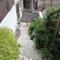 施工前、階段の両脇に植えた低木類が成長し、足元を圧迫しています。