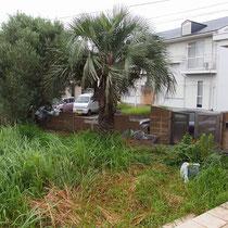 雑草で手が付けられない状態。そのほか庭のいたることこに不要な砂利袋や鉢植等が放置されておりました。