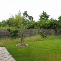 施工前、芝生を綺麗に保つのは本当に大変ですが、手付かずだったフェンス手前部分は手が回らず雑草が生え放題です。