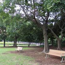 大きな公園には様々な休息施設があり、少しずつ改修させていただいております。