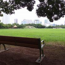 広い公園では、読書を楽しんだり子供たちと遊びに来るご家族など、たくさんの人々が利用するので安全な休息施設が求められます。
