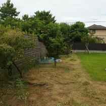まずは雑草を刈り取って整地、作業する場所を明確にします。