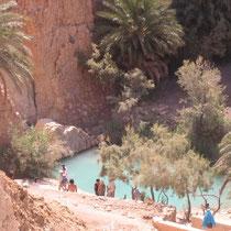Oasis de Tamerza, Túnez