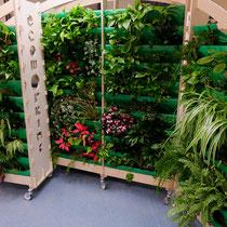 Muro verde de Ecoworking