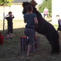 lot et bastides Unterhaltung mit Ponies