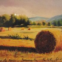 354- Les rouleaux de paille sur le champ près de ma maison, pastel 50x70