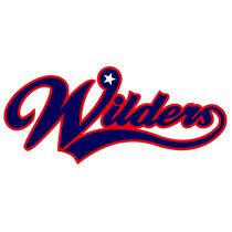 Logo type 少年野球チーム ロゴ
