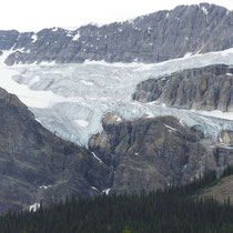 crowfoot glacier -icefields parkway