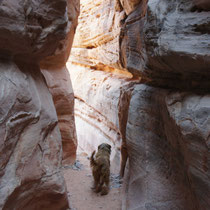 valley of fire - gandra im slot canyon