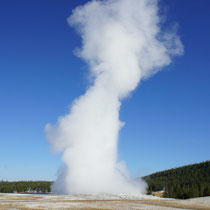 old faithful geysir im yellowstone