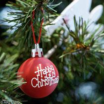 Un Noël pas comme les autres ....