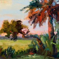 The Old Palmetto- -- Medium: Oil --- 5 X 7