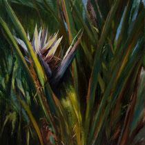 BIRD OF PARADISE --- Medium: Oil on a Board --- Size: 24 X 30