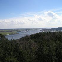 Sommerhochwasser an der Elbe (8 km entfernt)