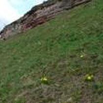 Bebertal April 2010