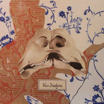 Conservé: Chaumont/Galeries d'Anatomie comparée