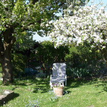 Gartenliegestuhl unter blühendem Apfelbaum