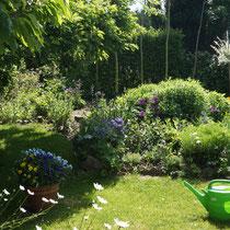 Gartenblick Mai, Staudenbeet, Gießkanne