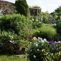 Bauerngarten Juni