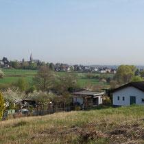Kleingartenalage Brühl-Eckdorf- Aussicht ins Rheintal