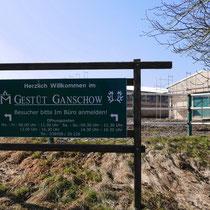 Das Gestüt Ganschow