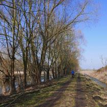 Entlang des Güstrow-Bützow-Kanales