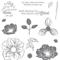 """Stempelset Klarsicht - """"Florale Freude"""" - 17,40 €"""